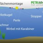 Oberflächenmontage auf Karpfen und Forellenmontage für die Wasseroberfläche