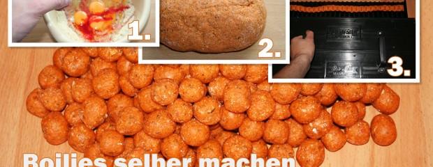 Boilies selber machen: Anleitung zur Herstellung (mit Rezepten)