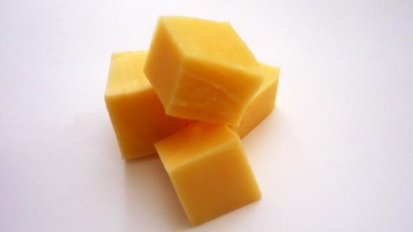 Käse-Köder